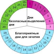 Как использовать календарь овуляции