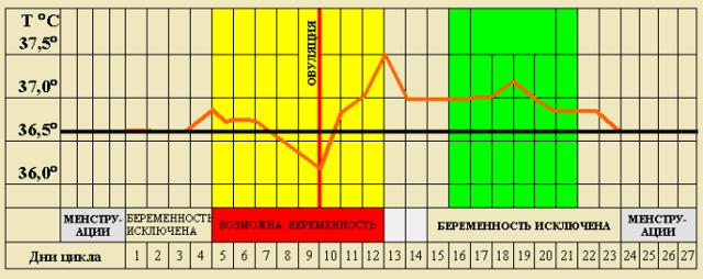 график базальной