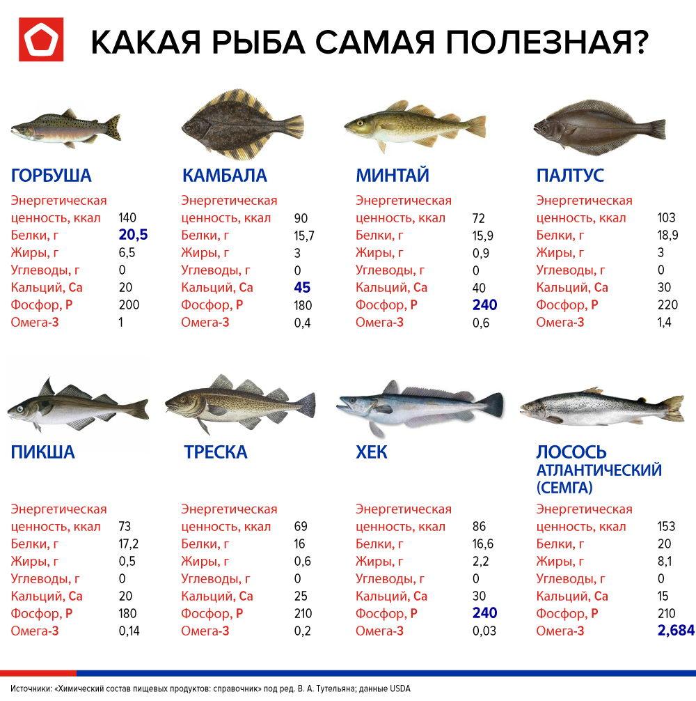 Содержание полезных веществ в морепродуктах